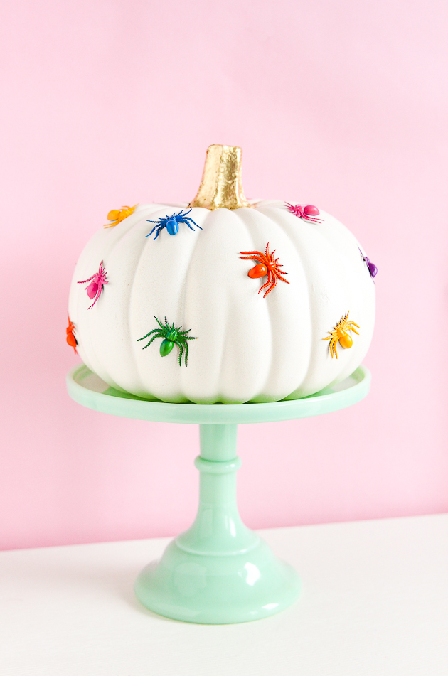 DIY Rainbow Spider Pumpkin